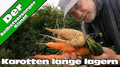 Möhren /  Karotten lange lagern für Selbstversorger