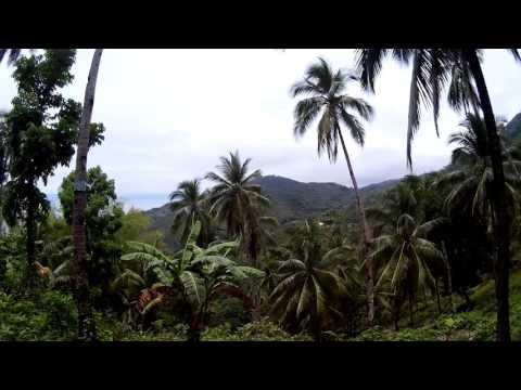 Alegria Cebu Experience