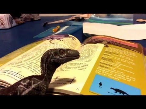 Dinosaur shorts: book