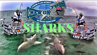 Fishing Shows On Youtube + # Catching Shark Fish In MYSTERIOUS Boat???