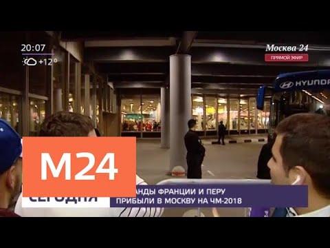 Смотреть фото Футболисты из Франции и Перу прибыли в Москву - Москва 24 новости россия москва