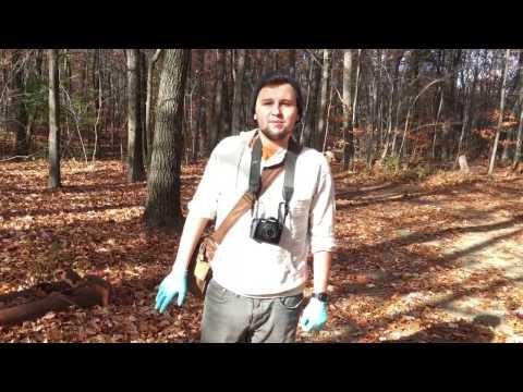 Volunteering with Mount Holyoke Range State Park. Section 1. Group 17. December 11, 2016