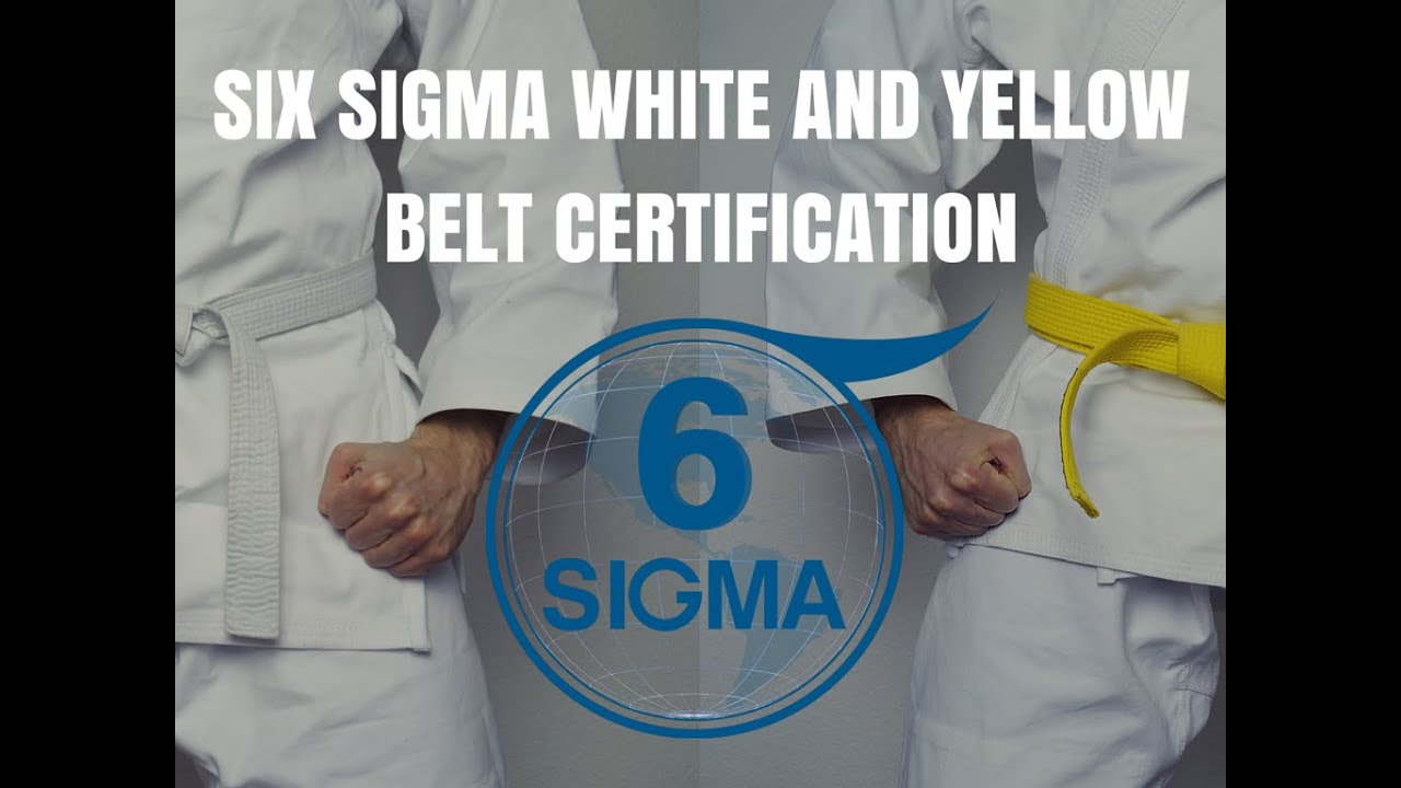 Six sigma certification houston tx six sigma white belt six six sigma certification houston tx six sigma white belt six sigma yellow belt youtube xflitez Choice Image