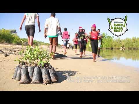 Compensation Carbone - Bloco Malagasy