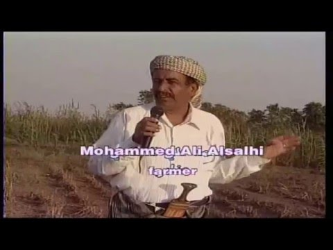 yemeni government's efforts for the ground water & soil conservation