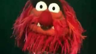 rapsodia bohemia muppets