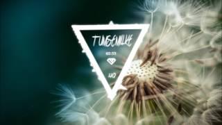 Tumse Milke Remixed