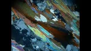 biotite en LPNA et LPA MOV