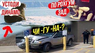 неПРИКОЛ (Sm Sharipov)