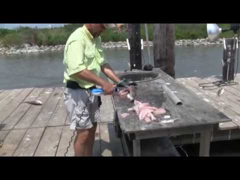 Speckled Trout Cleaning