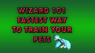 Wizard 101 | Best And Fastest Way To Train Your Pet