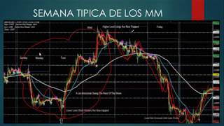 Market Maker Method by SFX Trading Clase 1.2