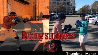 Boxing Strangers ( Glove Him!) Pt.2
