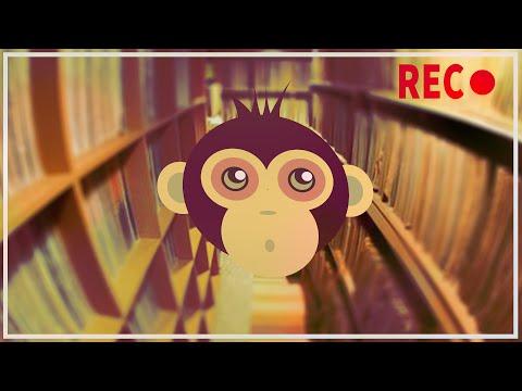 #FLEISCHFREI #APE-ONLY - Nur der Affe hats - Lost Recording 01!  - Overwatch m. Majo Schröber