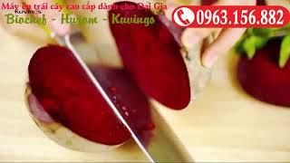 Máy ép trái cây hoa quả rau củ Kuving, nước ép ngon tuyệt vời