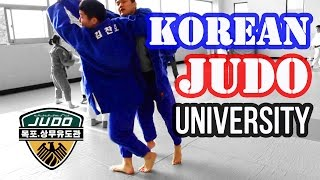 Korean Judo University (This is Why They WIN!)