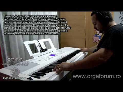 YAMAHA DGX-660 Digital Piano unofficial