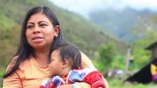 Documental Indígenas U'wa Colombia | Guardianes de la Madre Tierra