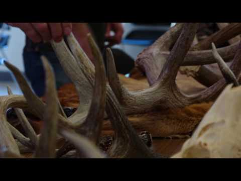 Tennessee Outdoors Youth Summit 2017 - TN WildCast insert