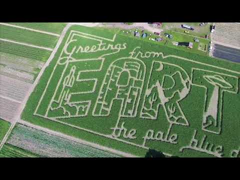 Mike's Maze 2017 sends message from Sunderland corn field visible from space