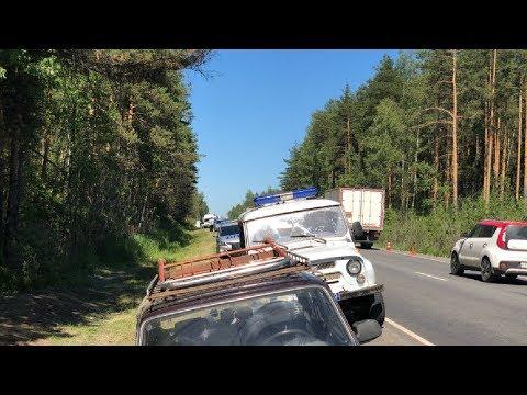 Протест жителей против строительства мусорного полигона в лесу Ликино-Дулево / LIVE 13.06.19
