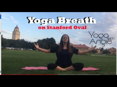 Yoga Breath - Yoga with Angie - on Stanford Oval