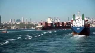 İstanbul boğazı derinliklerindeki 21 bin koyun!