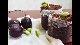 Lấy hạt và ươm hạt cherry - Hướng dẫn trồng cherry bằng hạt