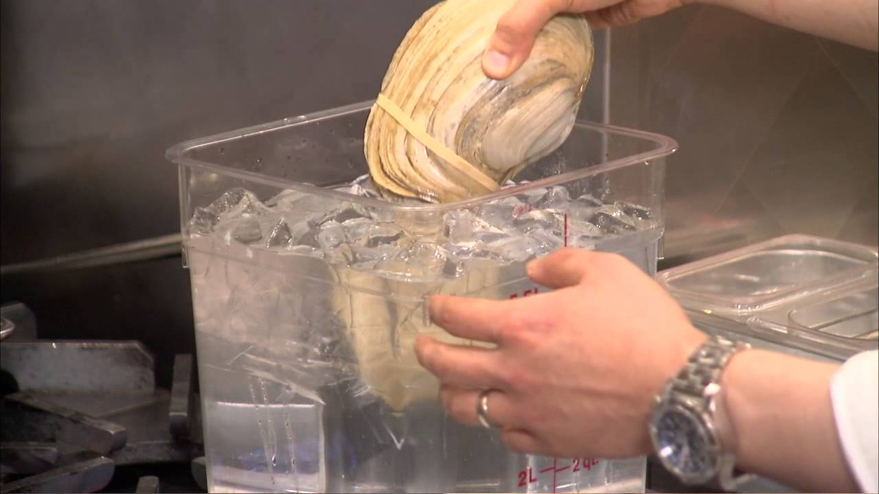 how to clean a horseneck clam chef skills prep tips how to clean a horseneck clam chef skills prep tips