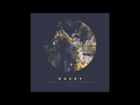 Dusky feat. Wiley - Sort It Out Sharon