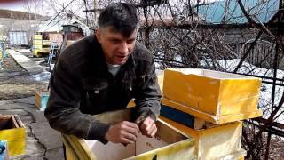 видео Ульи из пенополистирола