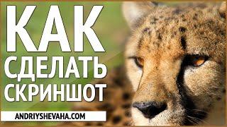 КАК СДЕЛАТЬ СКРИН ЭКРАНА? КАК СДЕЛАТЬ СНИМОК ЭКРАНА? JOXI ИНСТРУКЦИЯ(➀ ПОЛУЧИ ПОДАРКИ ЗДЕСЬ: http://andriyshevaha.com/go/free ➁ ЖМИ ПО ССЫЛКЕ http://goo.gl/eTREjM Ccылка на видео: ..., 2014-12-02T16:17:54.000Z)