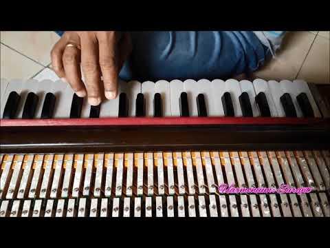 Dil Ki Yeh Aarzoo Thi Koi (Nikah-1982) - Harmonium