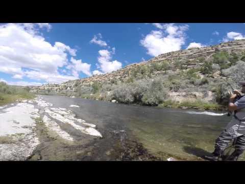 Fly Fishing The San Juan And Animas Rivers