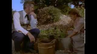 Доктор Куин: Женщина-врач 1 сезон 6 серия День отцов-основателей 1993 Гуманитарный вестерн
