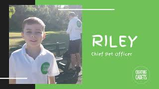 Riley  - Our Chief Pet Officer