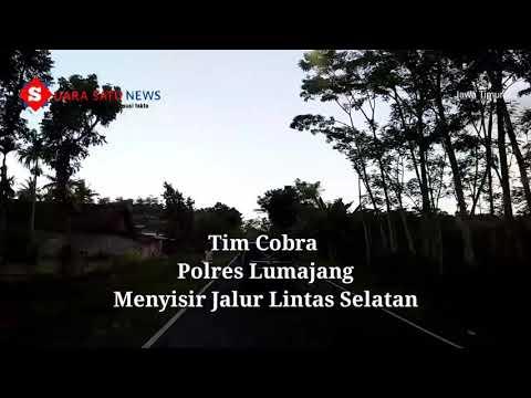 Video Penyisiran JLS Oleh Tim Cobra Polres Lumajang