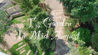 《8月中旬の庭》ガーデニング*レンガや石を敷いてメリハリをつけた庭《T's Garden》