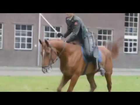 подвела лошадь
