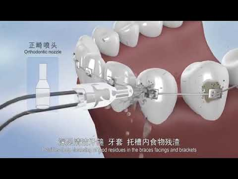China Ningbo Dione water flosser  oral irrigator