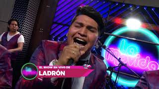 TU LADRON ❌ EN LA MOVIDA (EN VIVO) ✔