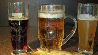 3 мифа о ПИВЕ из солодового концентрата + СЕБЕСТОИМОСТЬ пива / Домашнее пиво #8