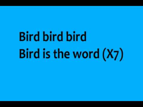 The Ramones - Surfin Bird - Lyrics