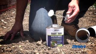 How to Prevent Root Intrusion in Outdoor Drainage with Christy's Root-Ban