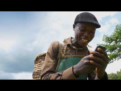 Payments in Agro Value Chains: The Tea Value Chain in Uganda