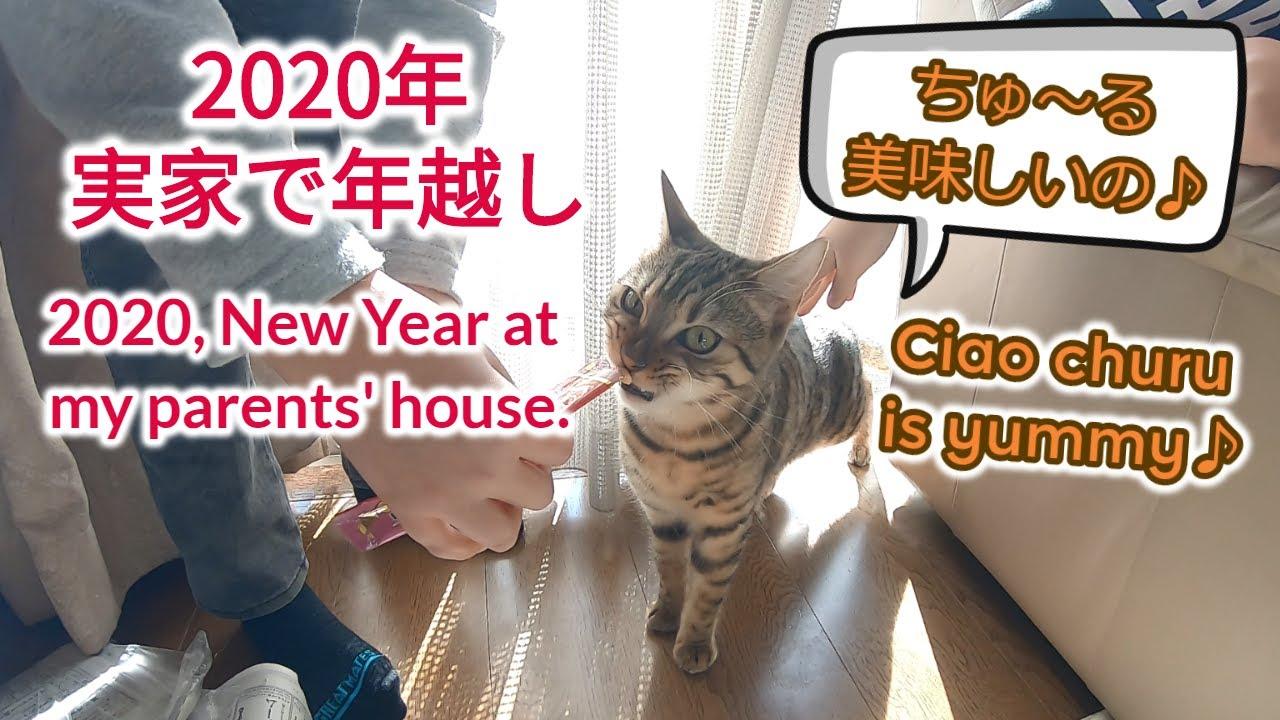 ☆ベンガル猫🐈ケイキ😻実家で年越し♪(Bengal cat Keiki, We spent the new year at my parents house😄)