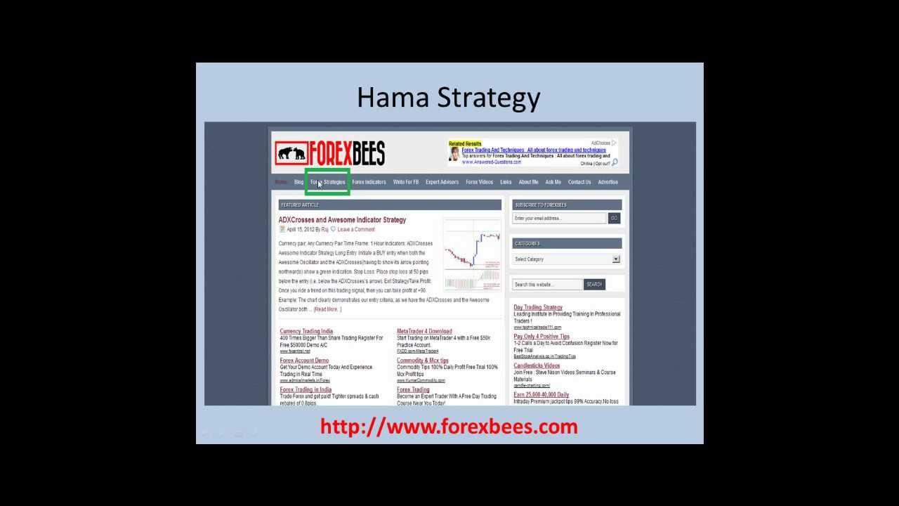 Hama Forex Strategy Youtube