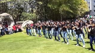 IBM Pune Flash Mob 14th March 2014