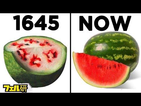 【衝撃】昔と今では全然違う食べ物7選