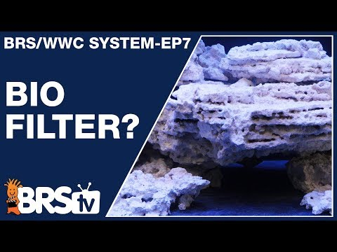 Ep7: Reef Tank Biofilter For A Stable, Long Term Reef Aquarium - The BRS/WWC System